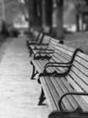Paris Park Benches — Stock Photo