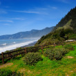 Stock Photo: Oregon Coast