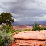 Summer rain storm over the desert — Stock Photo #3622988
