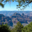Stock Photo: North rim of grand canyon