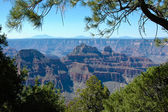 Borda norte do grand canyon — Fotografia Stock