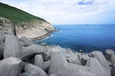 Yaz, deniz kıyısında güzel bay — Stok fotoğraf