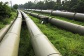 Industria de petróleo y gas — Foto de Stock