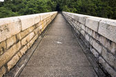 Path — Stock Photo