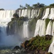 Iguassu waterfalls — Stock Photo #2818731