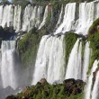 Iguassu waterfalls — Stock Photo #2818774