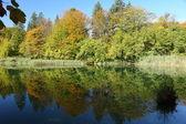 Park narodowy Plitvice — Zdjęcie stockowe