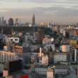 Tokyo City in Japan at sunset — Foto Stock