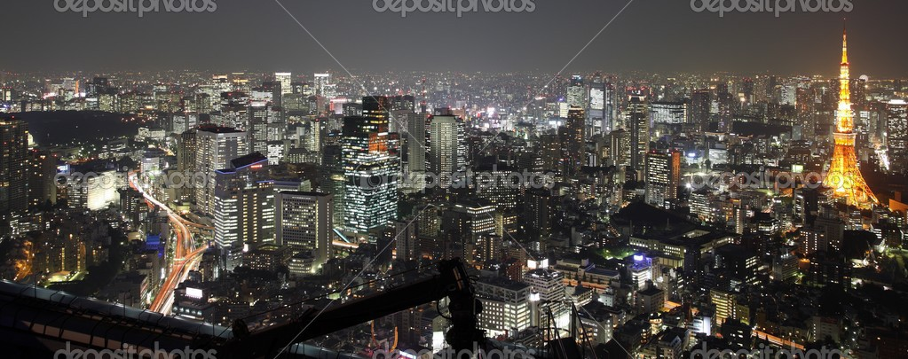 Illuminated Tokyo City in Japan at night from high above — Photo #2936322