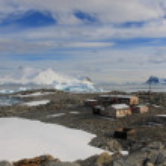 Antarctique — Photo