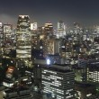 Stock Photo: Tokyo at night