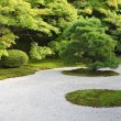 Japanese rock garden — Stock Photo #3633887