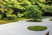 Japanese rock garden — Stock Photo