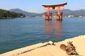 Torii at high tide — Stock Photo