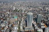 Tokyo bird's eye view — Stock Photo