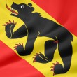 Flag of Bern - Switzerland — Stockfoto