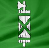 Flag of St. Gallen — Stock Photo