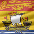 Flag of New Brunswick - Canada — Stock Photo