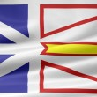 Flag of New Foundland and Labrador - Canada - Stock Photo