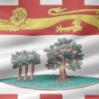 Flag of Prince Edward Island - Canada — Stock Photo