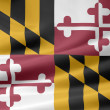 Flag of Maryland - USA - Stock Photo