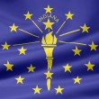 Flag of Indiana - USA — Foto Stock