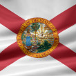 Flag of Florida - USA — Stock Photo