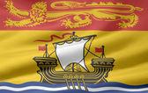Flag of New Brunswick - Canada — Stock Photo