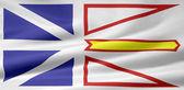Flag of New Foundland and Labrador - Canada — Stock Photo