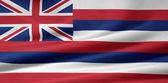 Flag of Hawaii - USA — Stock Photo