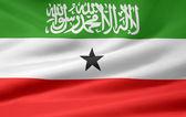 Flag of Somaliland — Stock Photo