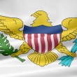 Flag of United States Virgin Island — Stock Photo