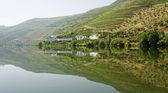 Hotel on River Douro — Stock Photo