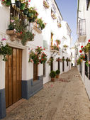 Flower lined side street Spain — Stock Photo