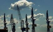 Docking cranes at harbor — Stock Photo