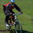 Stock Photo: Biker on downhill race