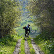Mountain biker on rural road — ストック写真