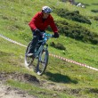 Stock Photo: Red biker on downhill race