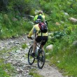 Mountain bikers uphill — Stock Photo