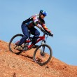 Mountain bike downhill — Stock Photo #2697375