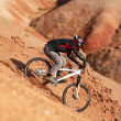 Extreme downhill — Stock Photo #2697487