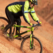 Royalty-Free Stock Photo: Freeride on red canyon