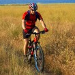 Bike tourist on yellow field beside lake — Stockfoto