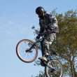 Stock Photo: Fly mountain biker
