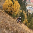 Stock Photo: Mountain Bike Downhill