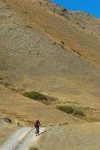 Biker on road in desert mountain — Stock Photo