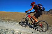Mountain biker on old road in desert — Stock Photo