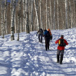 Three man snowshoer climbing in winter birch for - Stock Photo