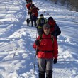 Big snowshoer group climbing in winter birch for - Stock Photo