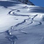 Snowboards track — Stock Photo